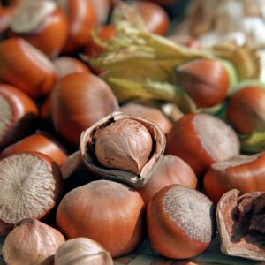 Contains L-arginine: hazelnuts, peanuts, cereal products, meat, fish, eggs and milk