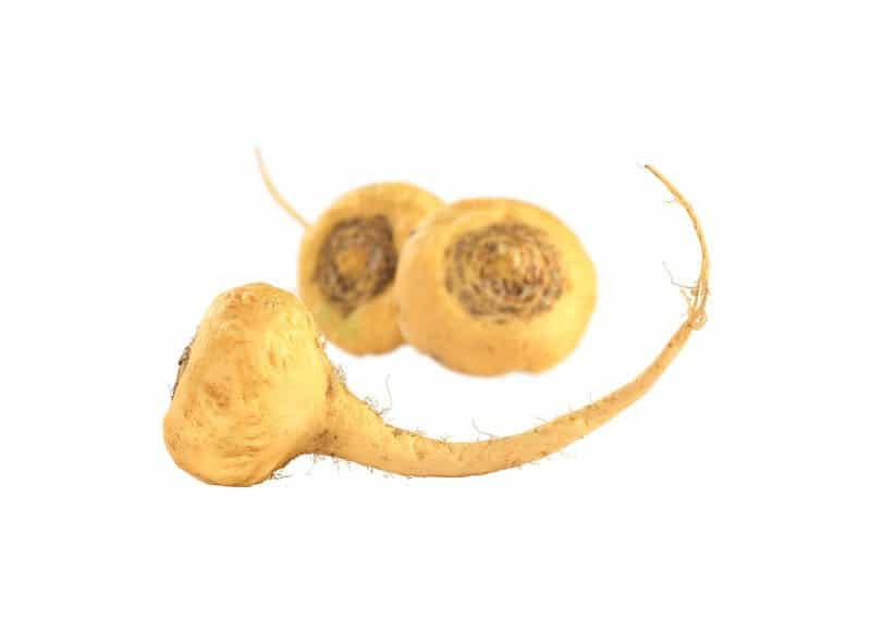The Benefits of Maca for Female Fertility - Fertilitytips com