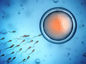 Popular Misconceptions About Infertility 1