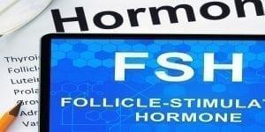 Follikel Stimulierendes Hormon (FSH) und dessen Rolle für die Fruchtbarkeit