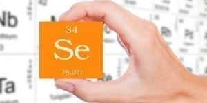 The Role of Selenium in Fertility 1