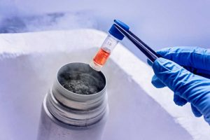 Egg Freezing: Fertility without an Expiration Date? 1