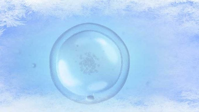 Egg Freezing: Fertility without an Expiration Date?
