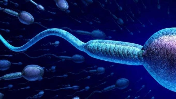 How to Naturally Improve Sperm Count