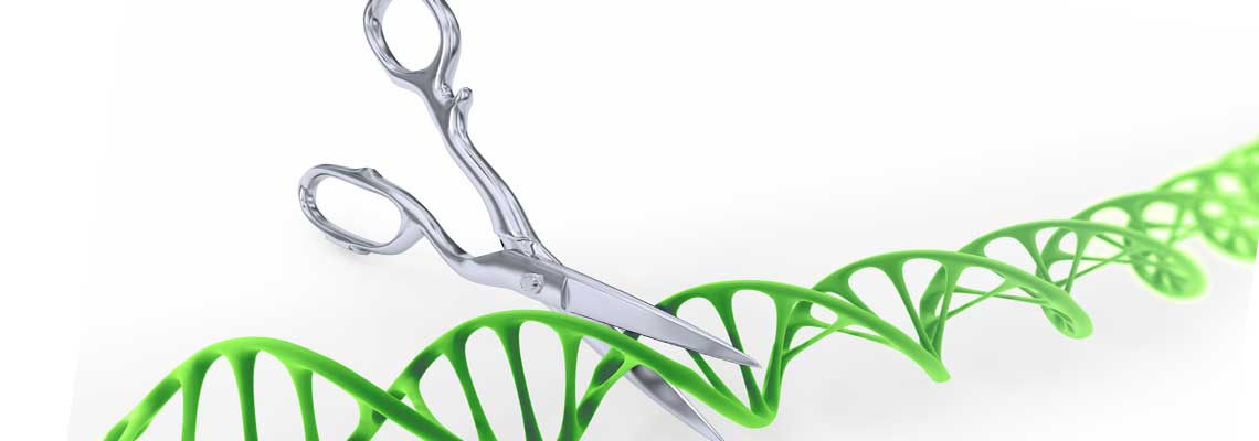 Rare Form of Infertility Linked to Gene Mutations