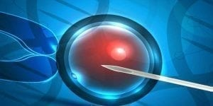 Genetic Pattern Gives Predictors of IVF Failure or Success 1