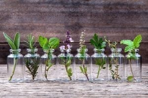 Homeopathy and Infertility: Why Natural Therapies are an Option Worth Considering 1