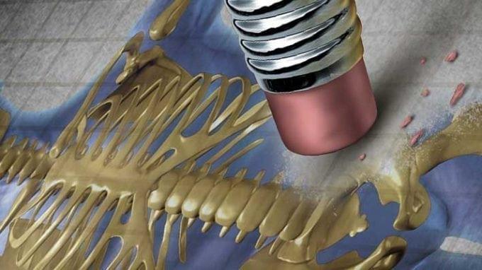 Increased Osteoporosis Risk in Infertile Men