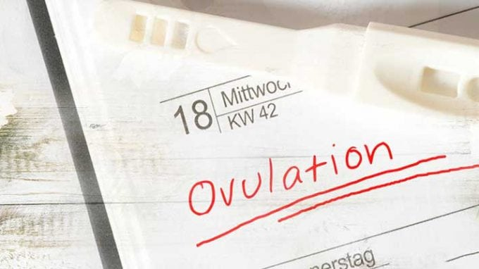 Holistic Approaches for Inducing Ovulation
