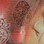 Samen-Rotation für die Furchtbarkeit