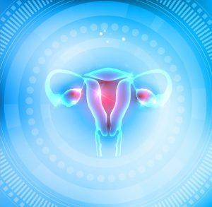 Maintaining Optimal Ovarian Function with Melatonin 1