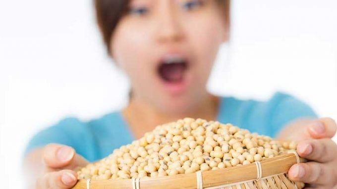 Soy and Fertility: The Controversy