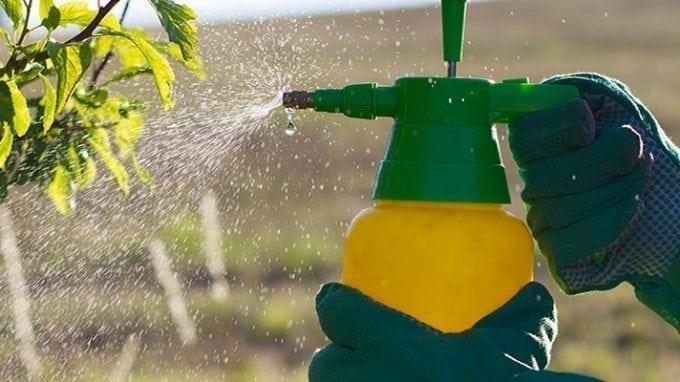 Decreased Fertility a Result of High-Pesticide Produce