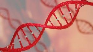 Gene Research Provides Breakthrough in Understanding Male Infertility 1