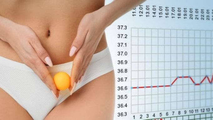 Understanding Ovulation Induction